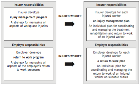 Guidelines for workplace rtw programs: insurer responsibilities
